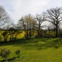le jardin du gîte au printemps